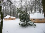 albums_Finse Kota_tumb_winter_151